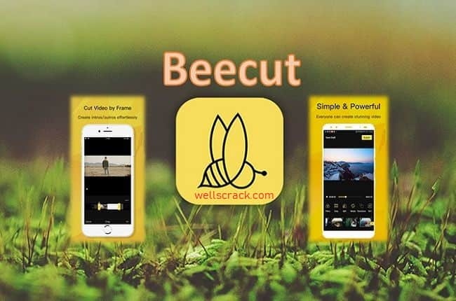 beecut crack + License Key Free Download!